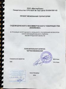 Проект подпись
